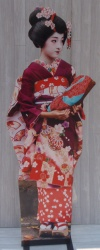 Geisha Cut Out XO1